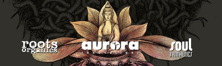 aurora-innovations-header.jpg